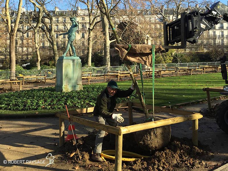 Plantation d'arbres au jardin du Luxembourg, Paris