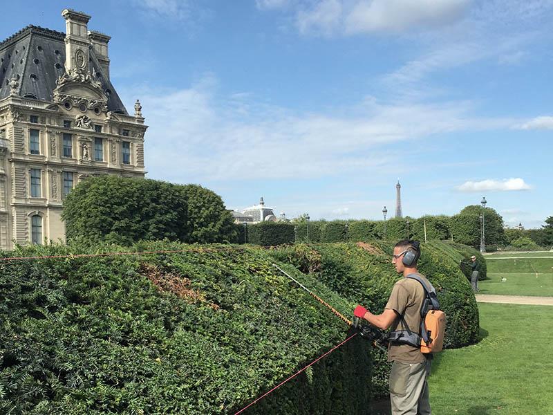 entretien-jardins-louvre-tuileries-6
