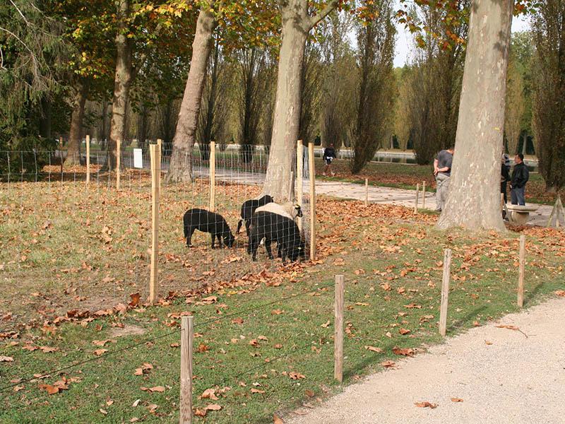 entretien-parc-historique-sceaux-5