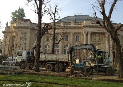 Paris, marché public de fouilles et plantations