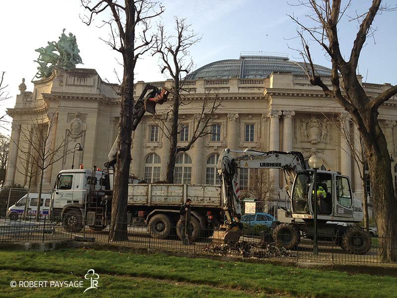 Paris fouilles plantations 1