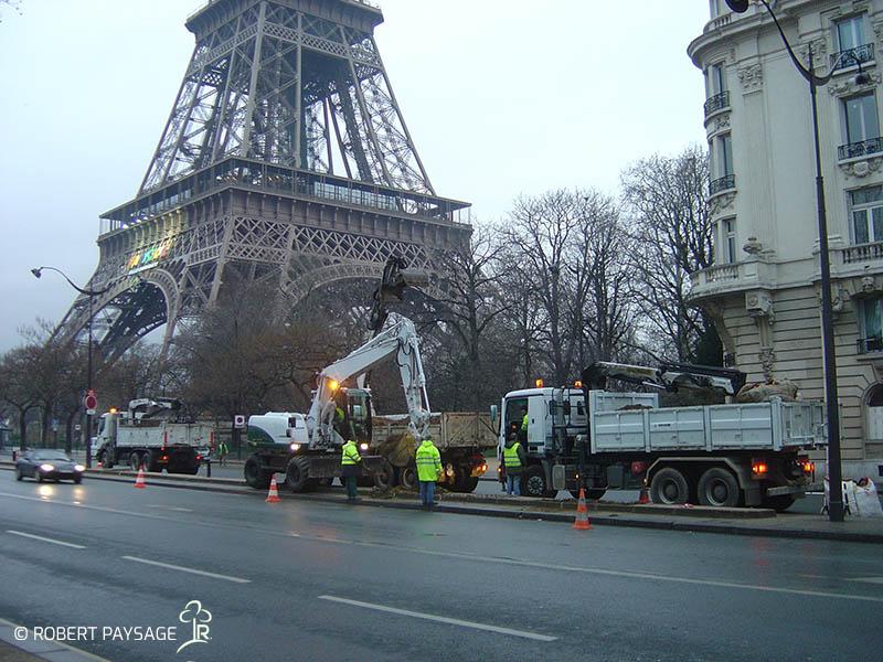 Paris fouilles plantations 2
