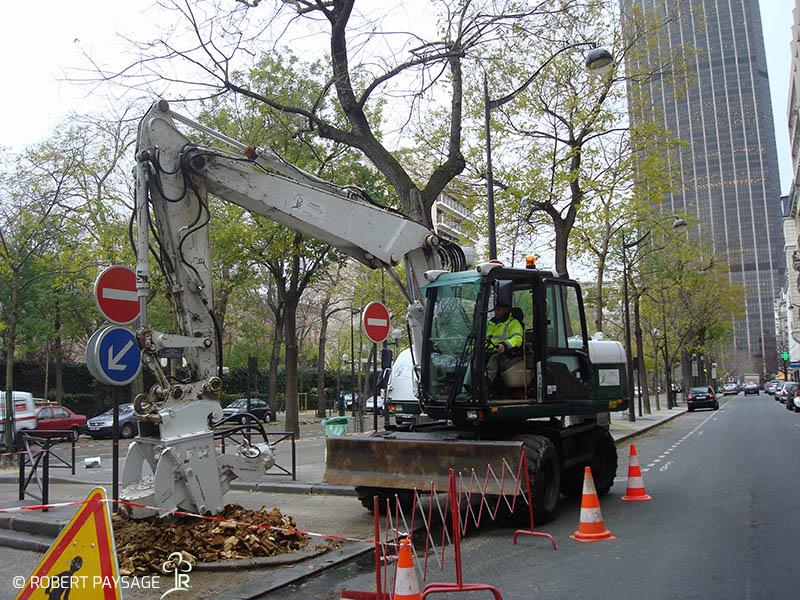 Paris fouilles plantations 3