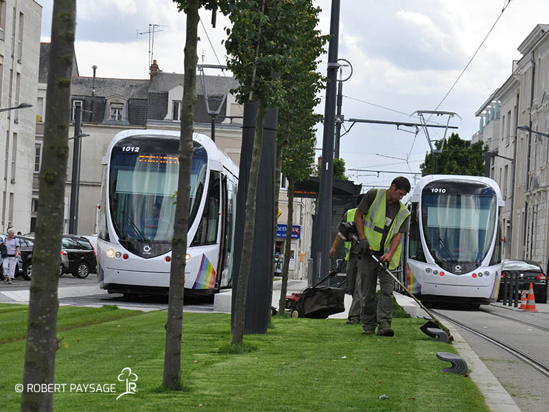tramway angers 6